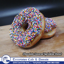 Donut_Chocolate_Covered_Sprinkles_PNG